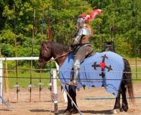 Knight of valour